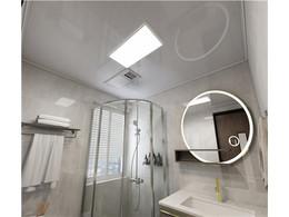 佛山铝天花厂家讲解卫生间铝天花吊顶用什么类型好?