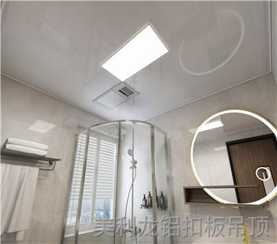 滚涂卫生间铝扣板效果图